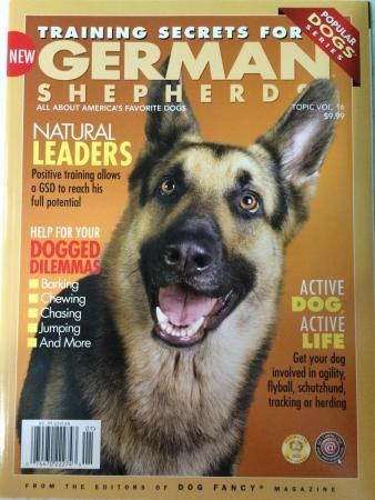 Black & Red German Shepherd Puppy - Male